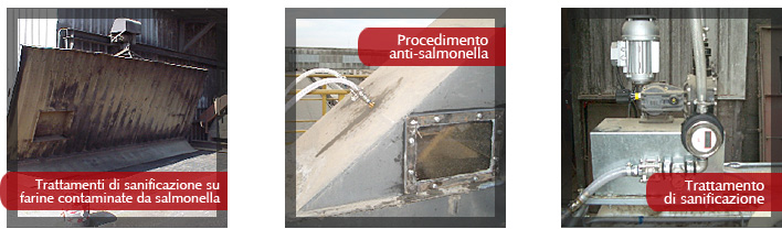 Trattamenti di sanificazione su farine contaminate da salmonella